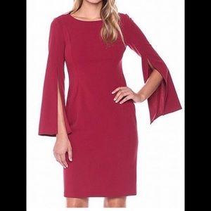 Calvin Klein Cranberry Red Dress